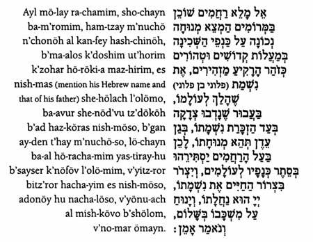 Hebrew Word For Black Dog