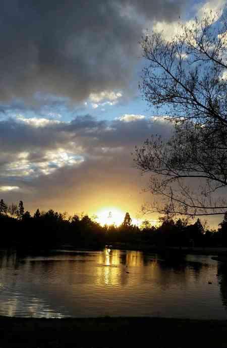park sunset1
