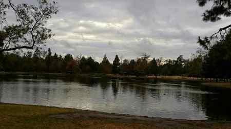 tmp_28793-Park rain539355616